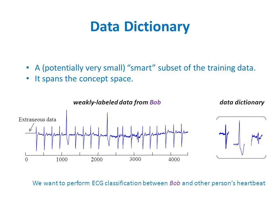 Data Dictionary A (potentially very small) smart subset of the training data.
