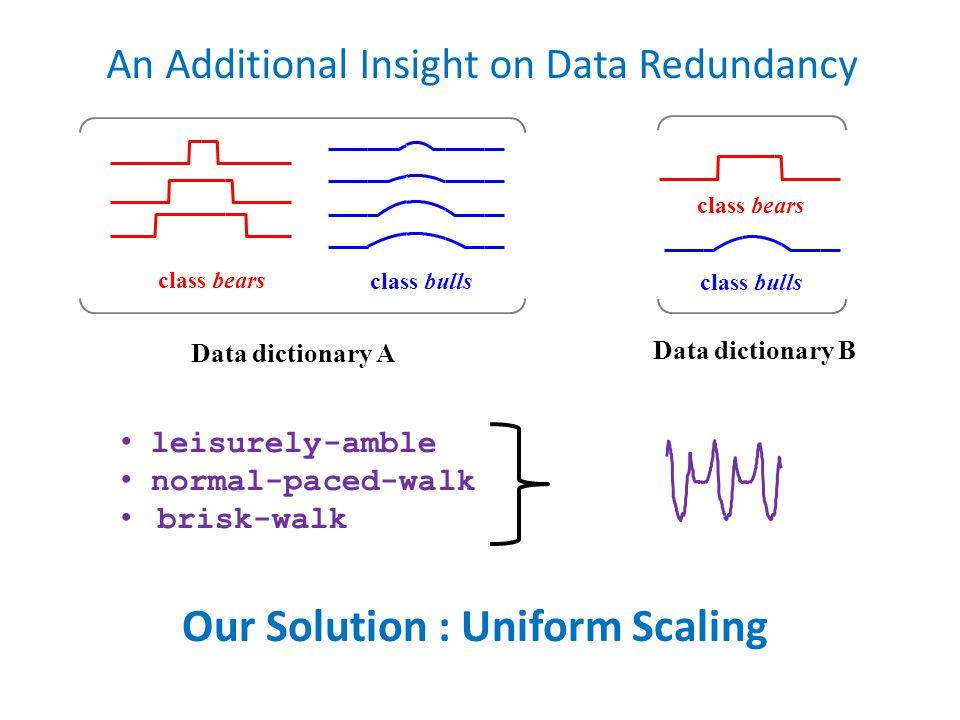 An Additional Insight on Data Redundancy Data dictionary A class bulls class bears Data dictionary B class bears class bulls leisurely-amble normal-paced-walk brisk-walk Our Solution : Uniform Scaling