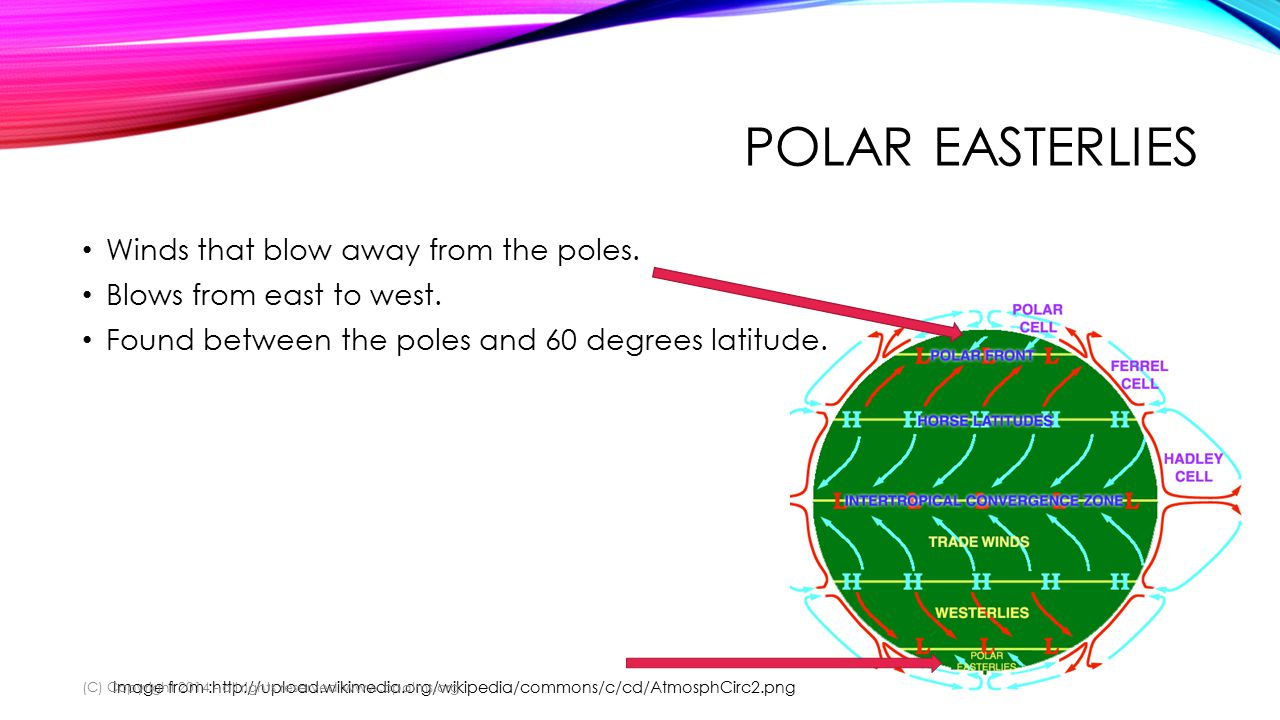 POLAR EASTERLIES Winds that blow away from the poles.