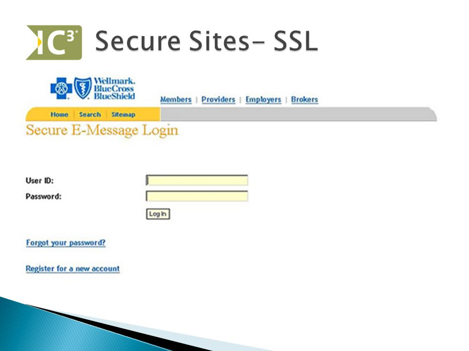  Password DOES NOT mean secure  Secure Socket Layer (SSL) ◦ Encrypts the data (credit card #'s, etc.) ◦ URL will begin with https://  Log Off after leaving site ◦ Why