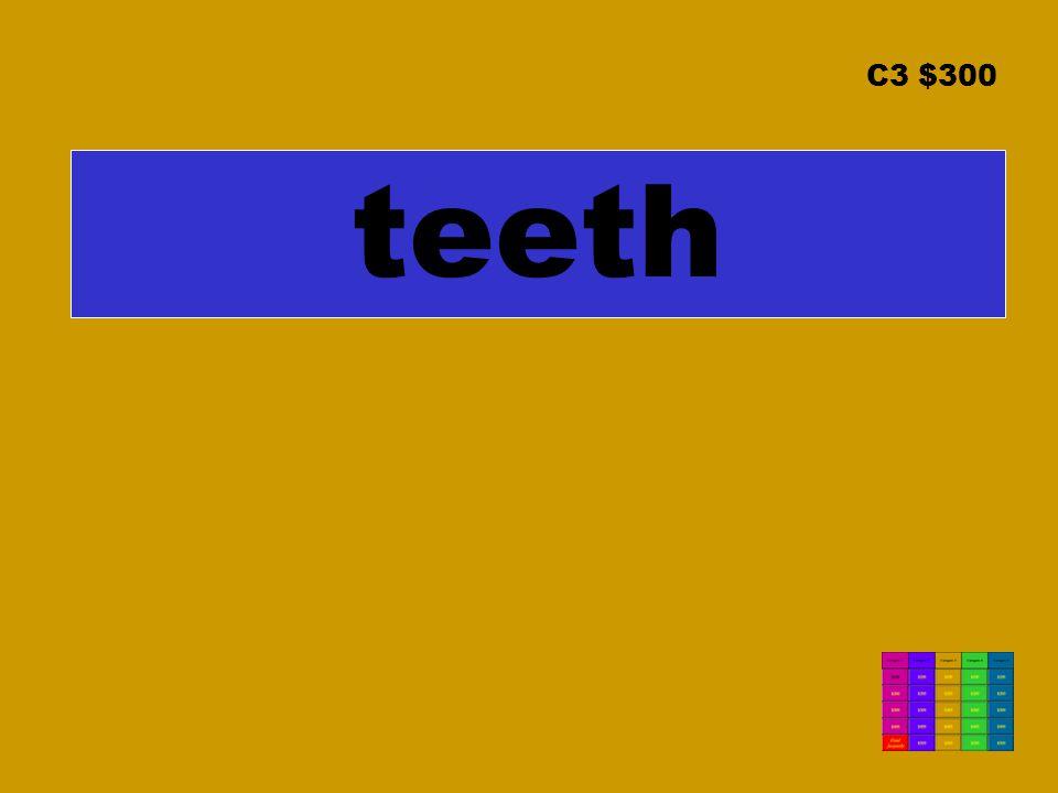 C3 $300 teeth