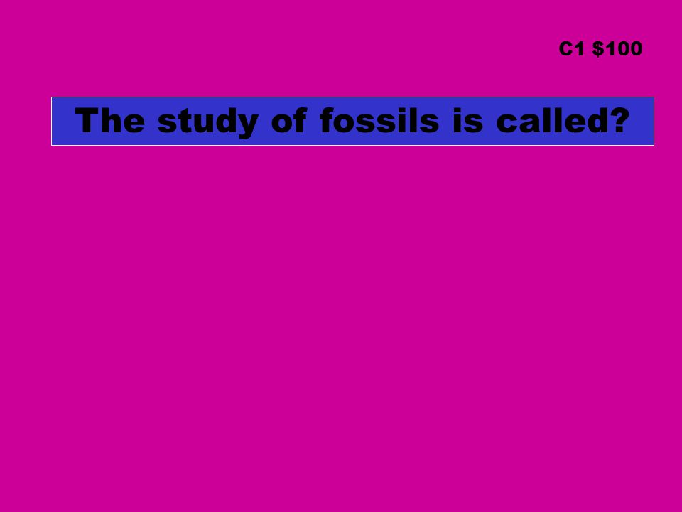 The study of fossils is called? C1 $100