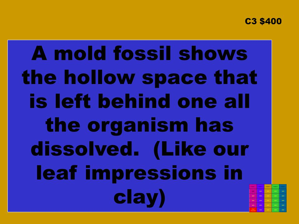 C3 $400 A mold fossil shows the hollow space that is left behind one all the organism has dissolved.
