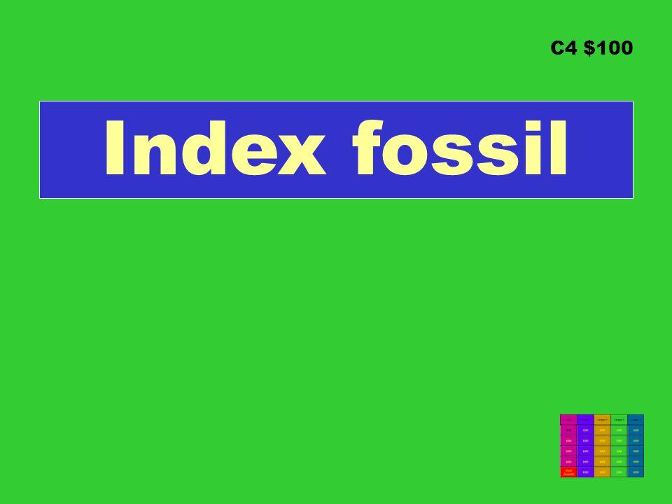 C4 $100 Index fossil