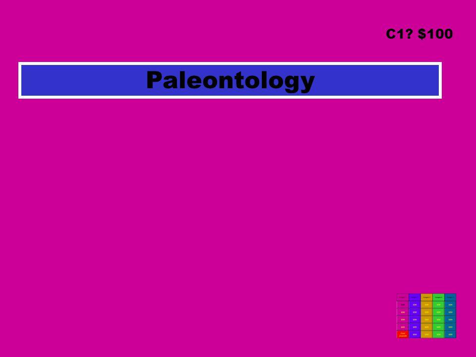 Paleontology C1? $100