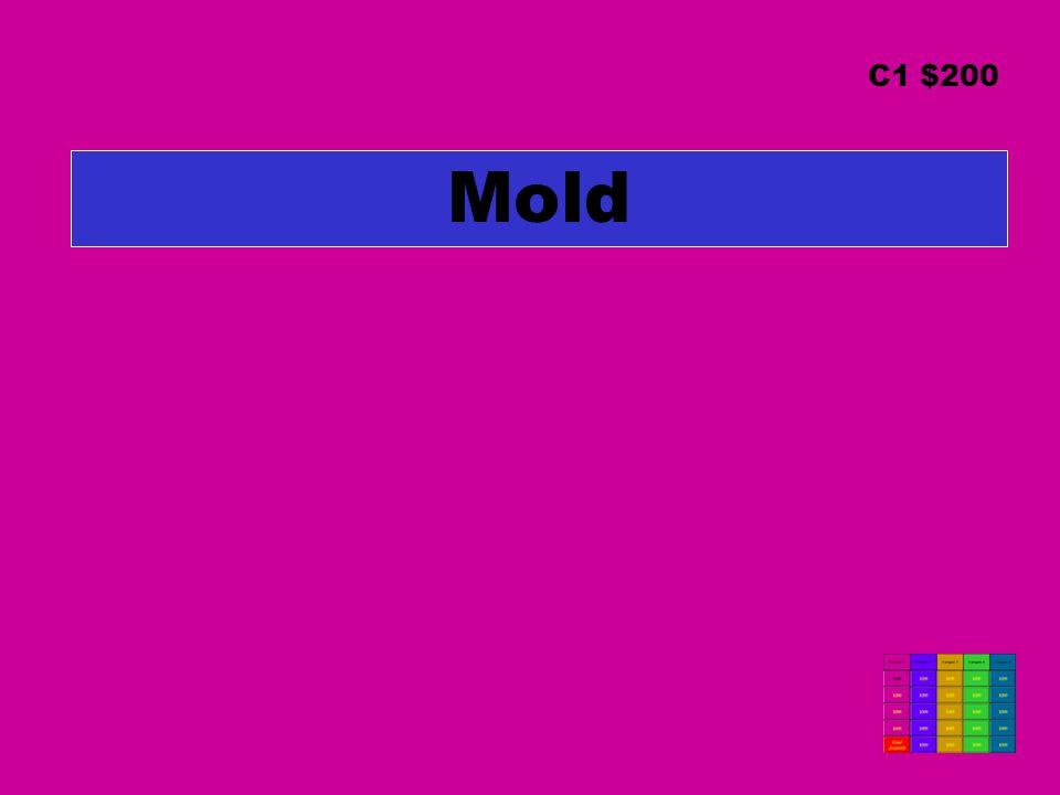 Mold C1 $200