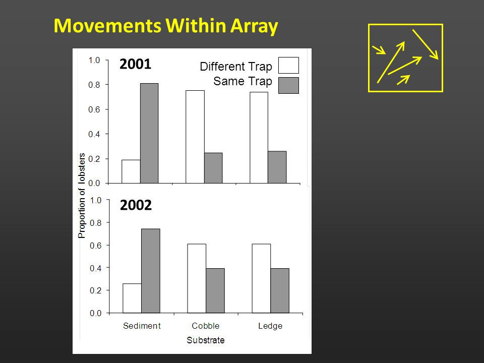 Movements Within Array Different Trap Same Trap 2001 2002
