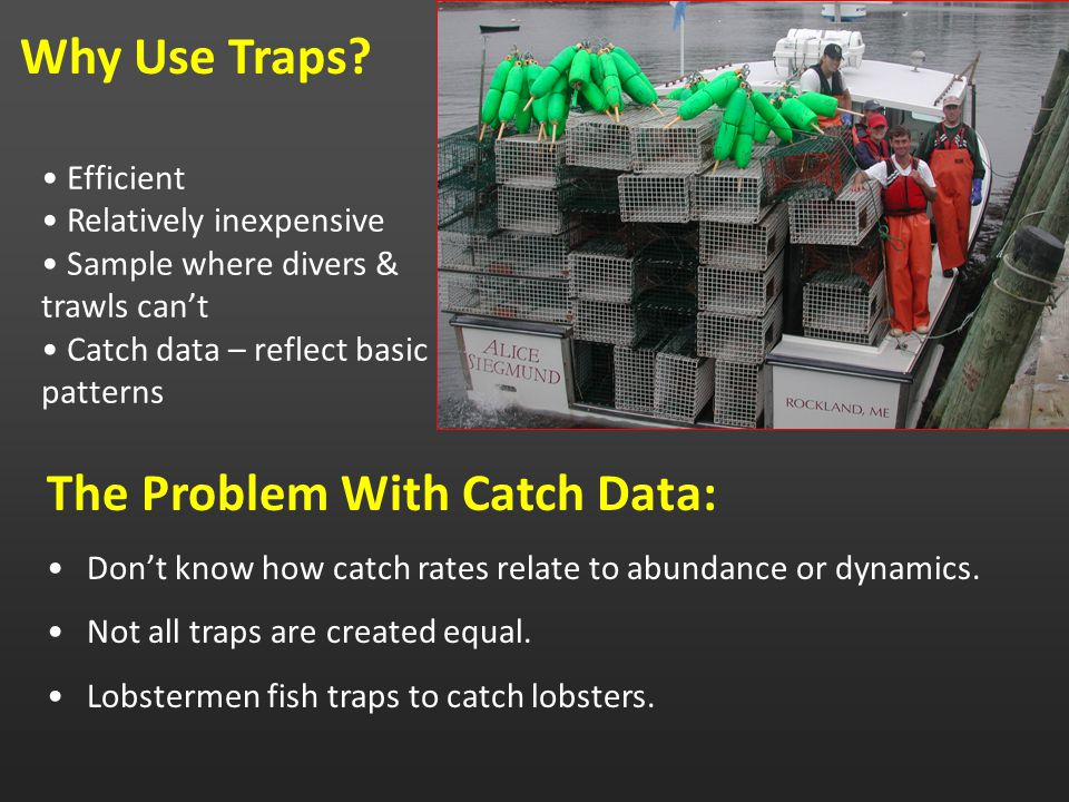 Efficient Relatively inexpensive Sample where divers & trawls can't Catch data – reflect basic patterns Why Use Traps.