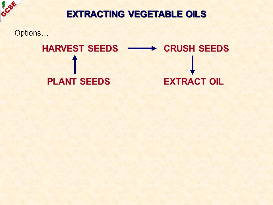EXTRACTING VEGETABLE OILS Options… HARVEST SEEDS CRUSH SEEDS PLANT SEEDS EXTRACT OIL
