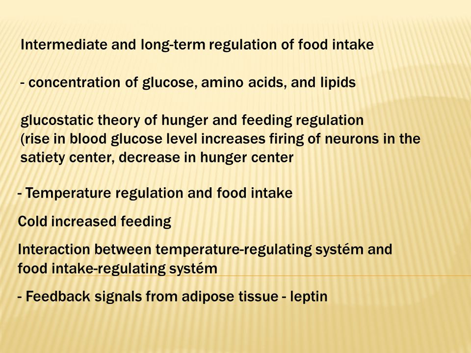 Intermediate and long-term regulation of food intake - concentration of glucose, amino acids, and lipids glucostatic theory of hunger and feeding regulation (rise in blood glucose level increases firing of neurons in the satiety center, decrease in hunger center - Temperature regulation and food intake Cold increased feeding Interaction between temperature-regulating systém and food intake-regulating systém - Feedback signals from adipose tissue - leptin