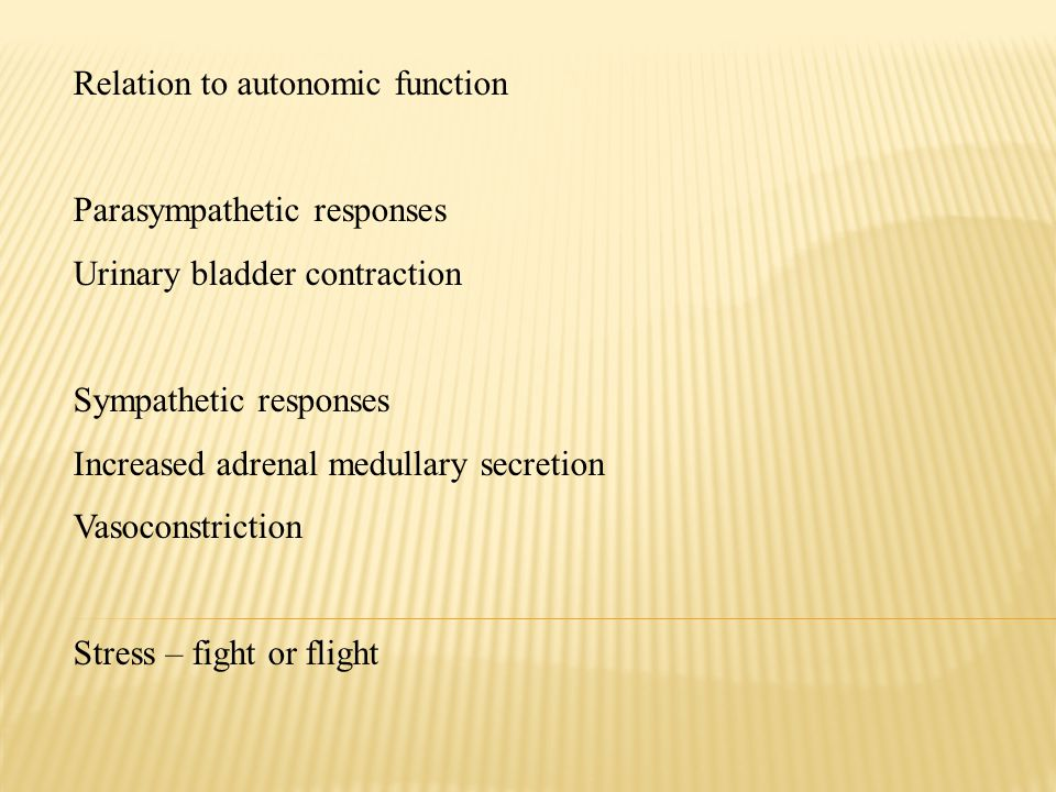 Relation to autonomic function Parasympathetic responses Urinary bladder contraction Sympathetic responses Increased adrenal medullary secretion Vasoconstriction Stress – fight or flight