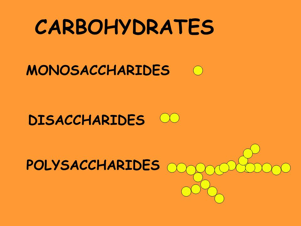 MONOSACCHARIDES DISACCHARIDES POLYSACCHARIDES