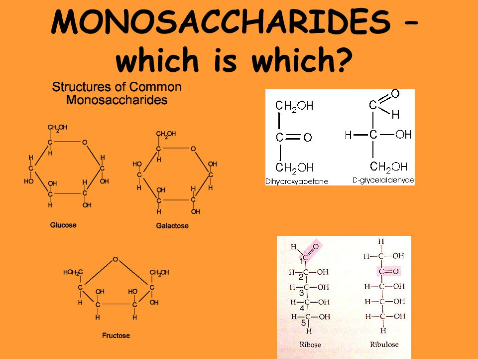 MONOSACCHARIDES – which is which?