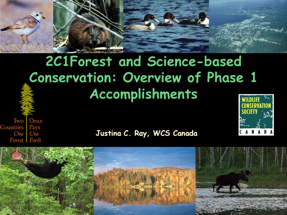 2C1Forest reinventing conservation for 21st Century Science-based, transboundary, landscape-scale conservation