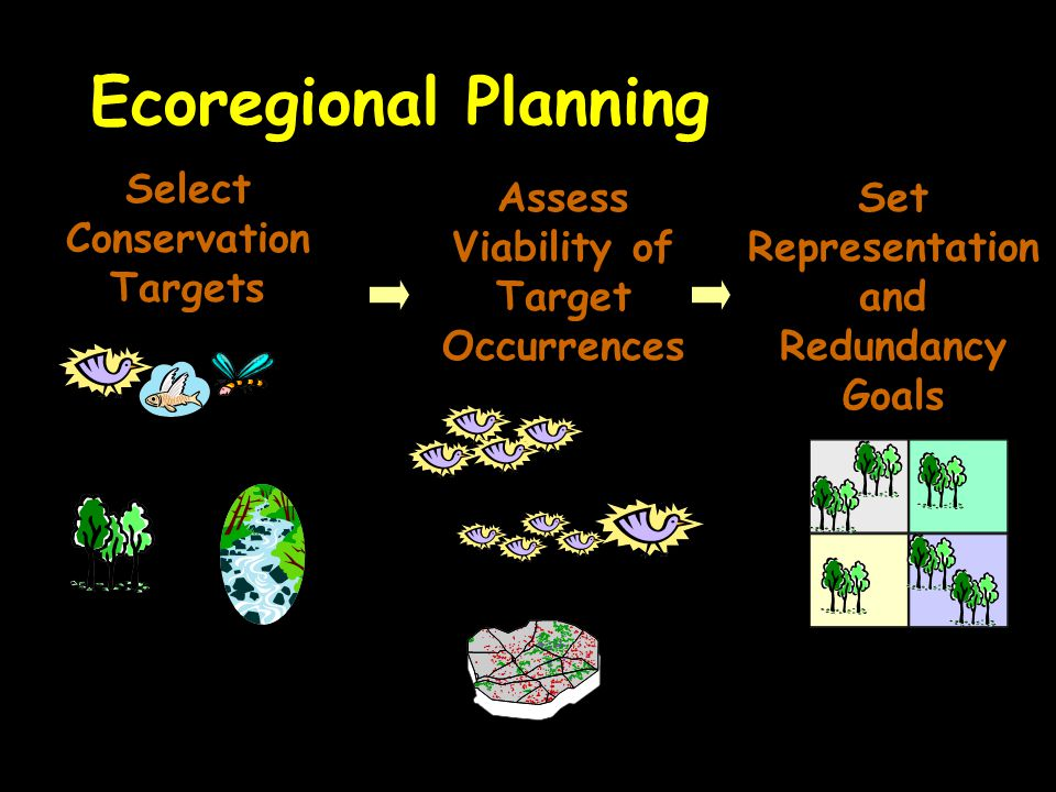Ecoregional Planning Select Conservation Targets Fine Filter:Species Coarse Filter: Ecological Communities, Systems, and Physical Diversity Assess Viability of Target Occurrences Size Condition Landscape Context Set Representation and Redundancy Goals Number and Distribution