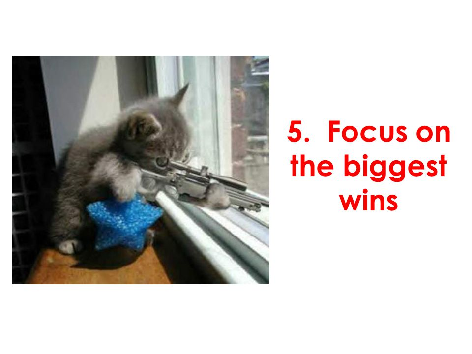 5. Focus on the biggest wins