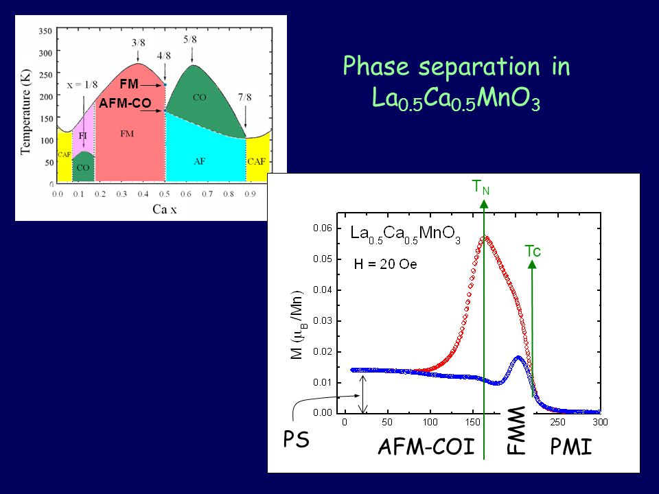 Phase separation in La 0.5 Ca 0.5 MnO 3 FM AFM-CO PMI FMM AFM-COI Tc TNTN PS