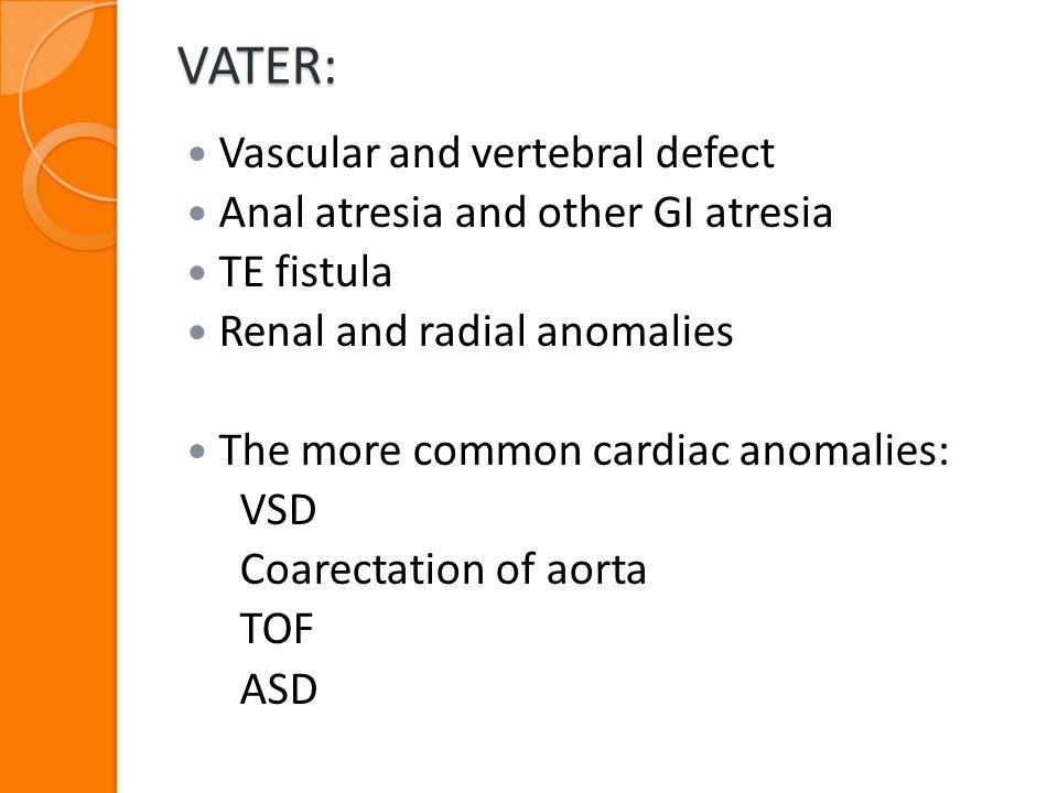 VATER: Vascular and vertebral defect Anal atresia and other GI atresia TE fistula Renal and radial anomalies The more common cardiac anomalies: VSD Co