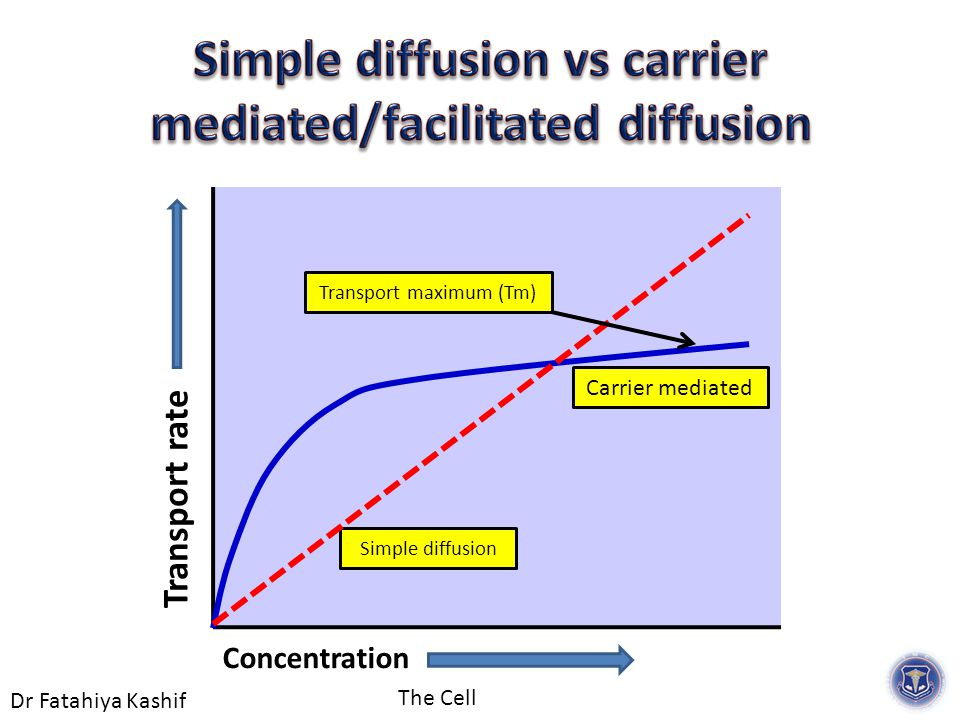 Dr Fatahiya Kashif The Cell Carrier mediated Simple diffusion Transport rate Concentration Transport maximum (Tm)