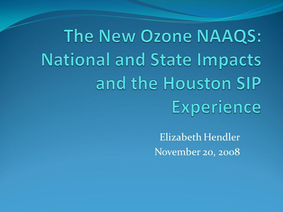 Elizabeth Hendler November 20, 2008