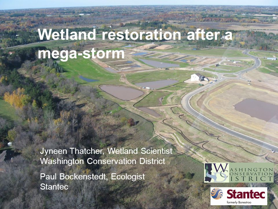 Prior conditions South Twin Lake- an impaired waters Brown's Creek – a designated trout stream Wetland delineation
