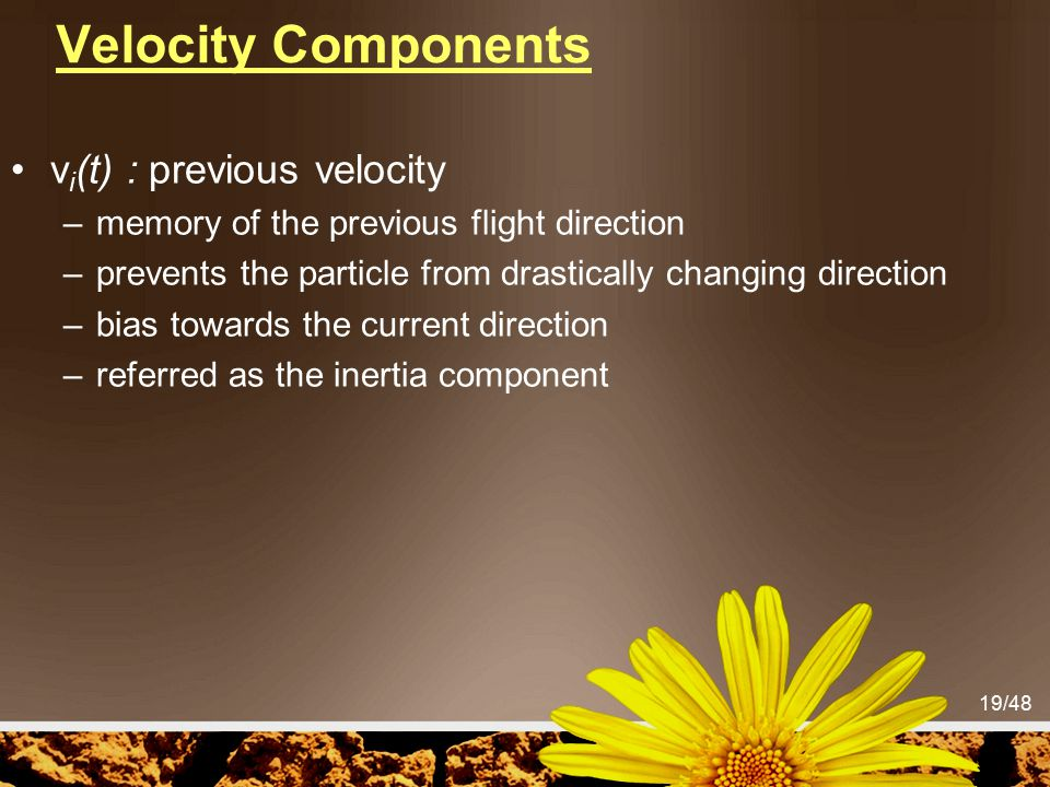 19/48 Velocity Components v i (t) : previous velocity –memory of the previous flight direction –prevents the particle from drastically changing direct