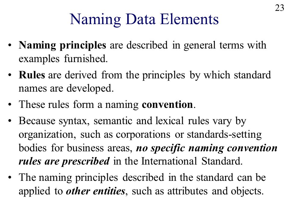 23 Naming Data Elements Naming principles are described in general terms with examples furnished.