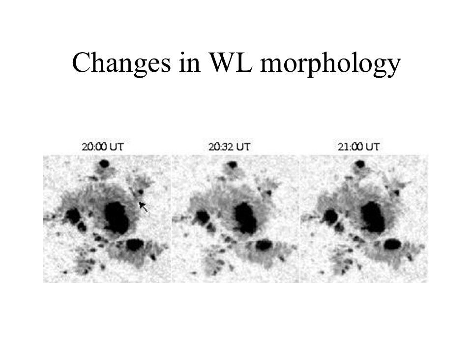 Changes in WL morphology