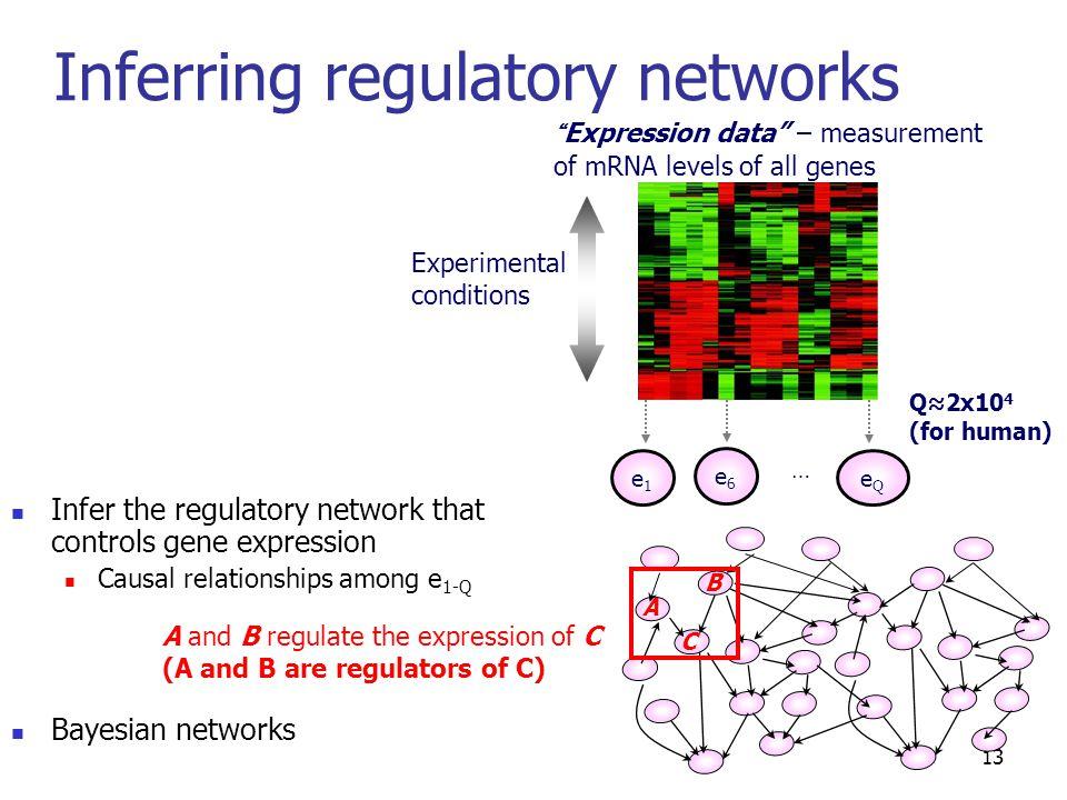 "Inferring regulatory networks 13 ""Expression data"" – measurement of mRNA levels of all genes e1e1 eQeQ e6e6 … Infer the regulatory network that contro"