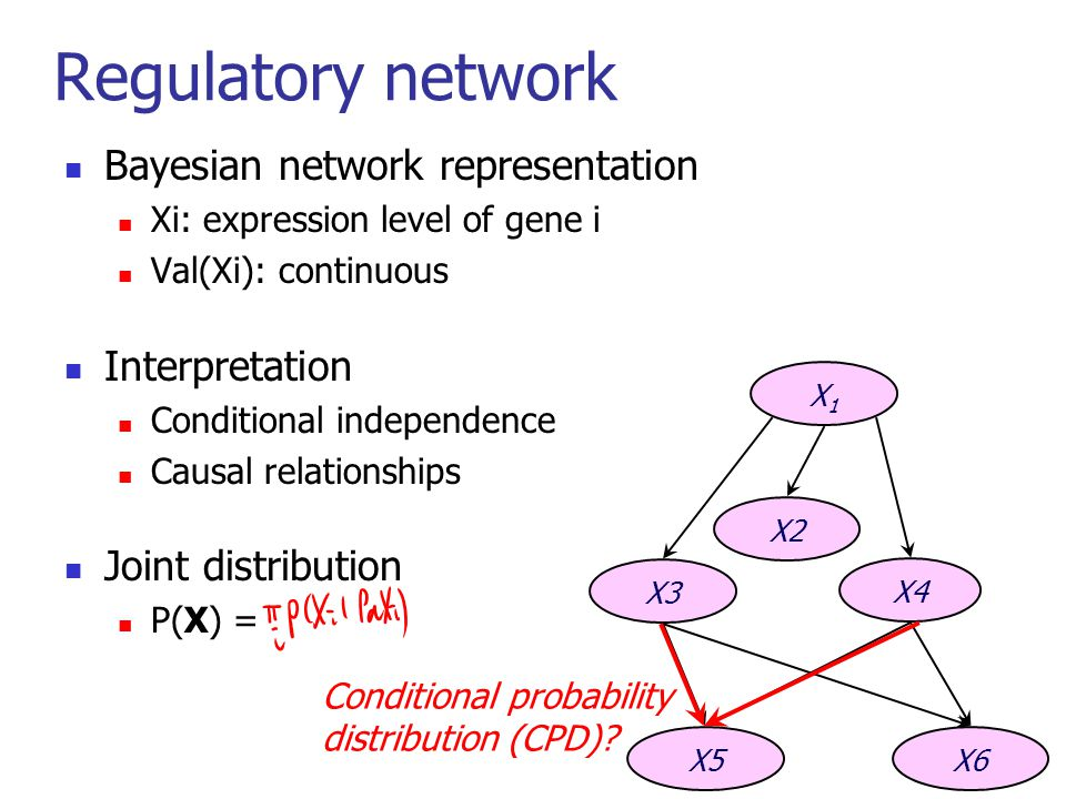 14 Regulatory network Bayesian network representation Xi: expression level of gene i Val(Xi): continuous Interpretation Conditional independence Causal relationships Joint distribution P(X) = X1X1 X3 X4 X5X6 X2 Conditional probability distribution (CPD)