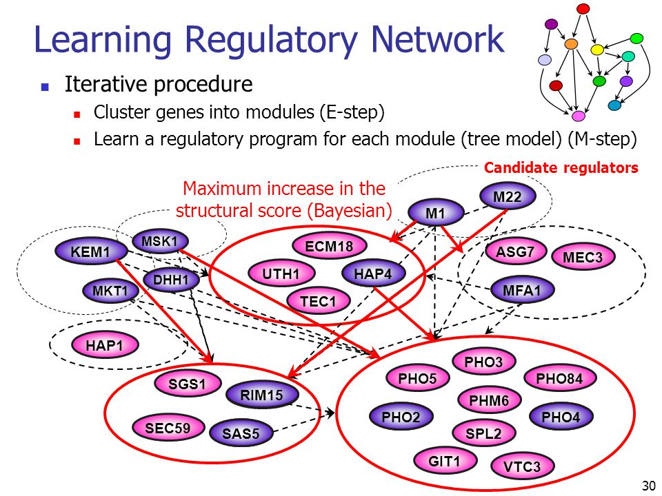 Iterative procedure Cluster genes into modules (E-step) Learn a regulatory program for each module (tree model) (M-step) Learning Regulatory Network P