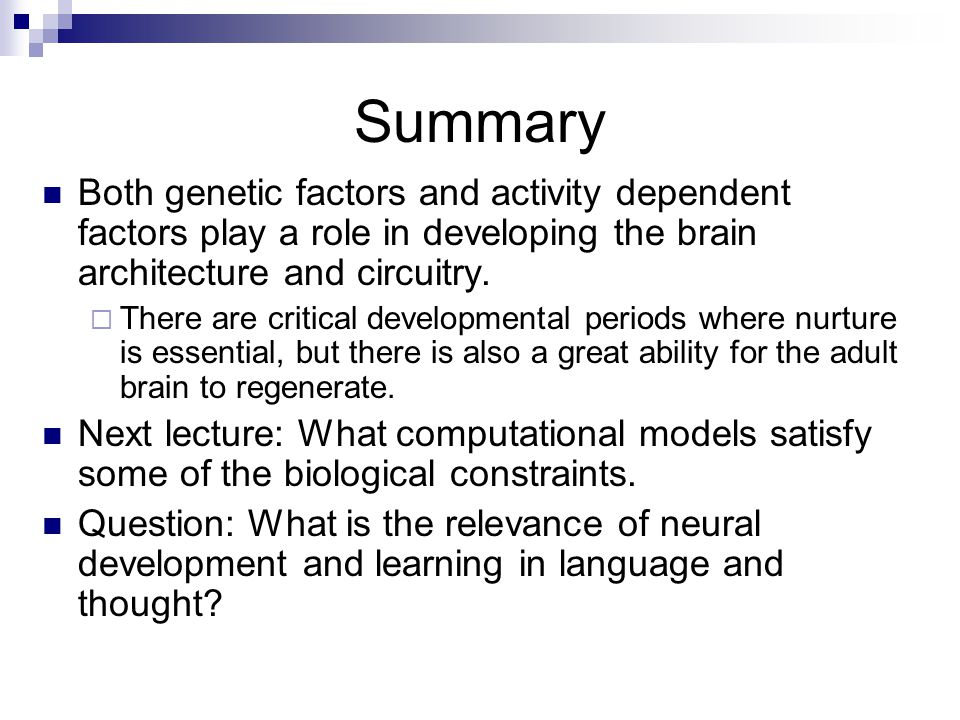 Summary Both genetic factors and activity dependent factors play a role in developing the brain architecture and circuitry.