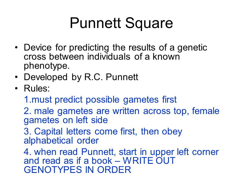 Punnett Square Device for predicting the results of a genetic cross between individuals of a known phenotype. Developed by R.C. Punnett Rules: 1.must
