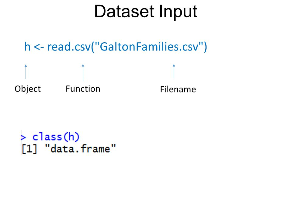 Dataset Input Function Filename Object h <- read.csv( GaltonFamilies.csv )