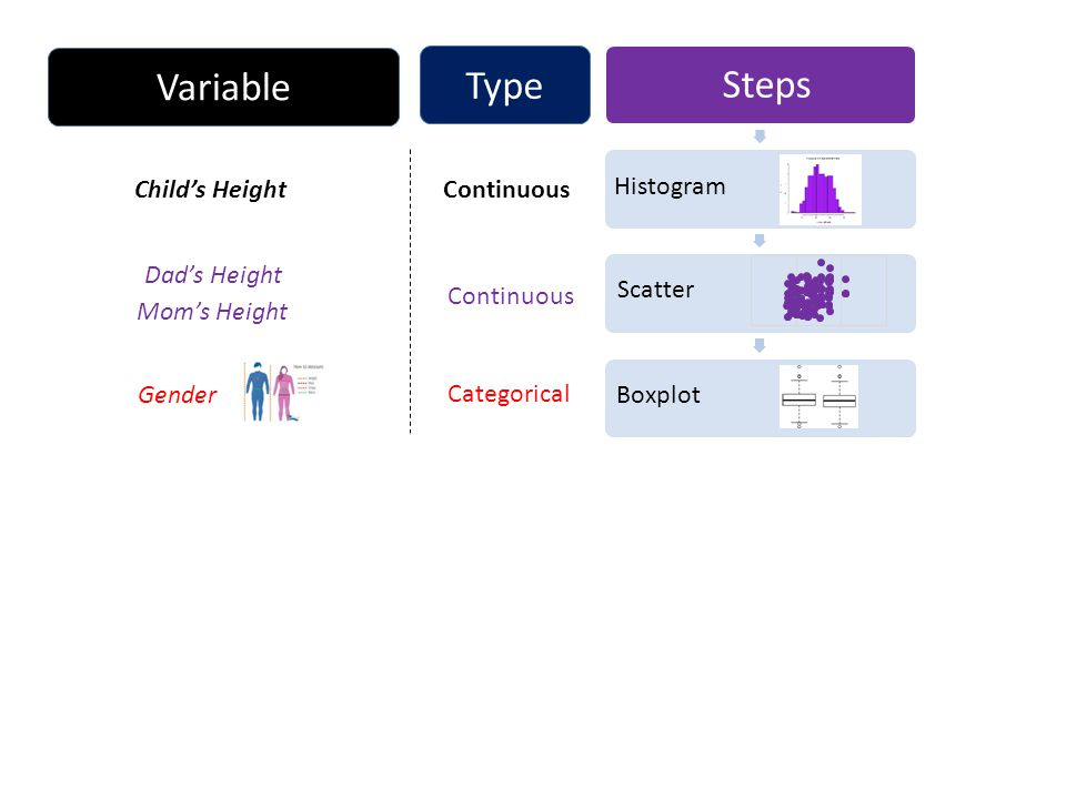Steps Continuous Categorical Histogram Scatter Boxplot Child's Height Dad's Height Gender Continuous Type Variable Mom's Height