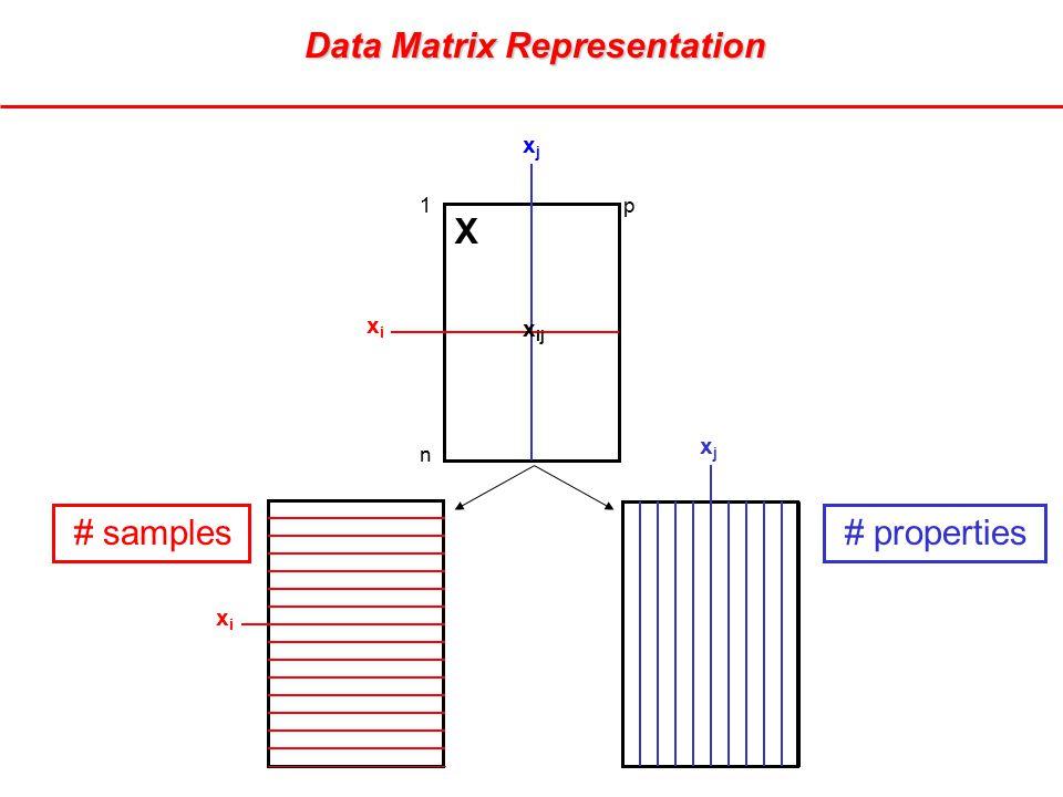 Data Matrix Representation Data Matrix Representation xjxj xixi X x ij 1p n xjxj xixi # samples # properties