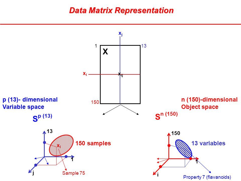 xjxj xixi X x ij 113 150 13 1 150 1 i p (13)- dimensional Variable space 13 variables150 samples n (150)-dimensional Object space j xixi Sample 75 Property 7 (flavanoids) S p (13) S n (150)       Data Matrix Representation Data Matrix Representation
