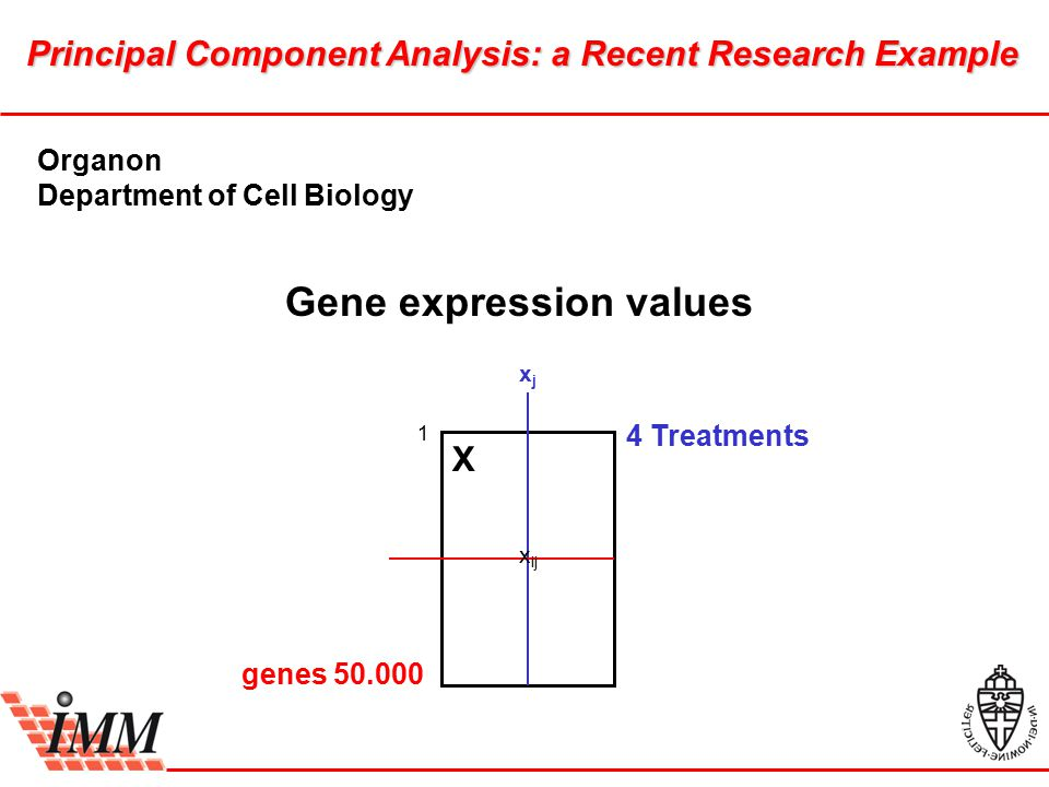 Gene expression values Principal Component Analysis: a Recent Research Example X x ij 1 4 Treatments genes 50.000 xjxj Organon Department of Cell Biology
