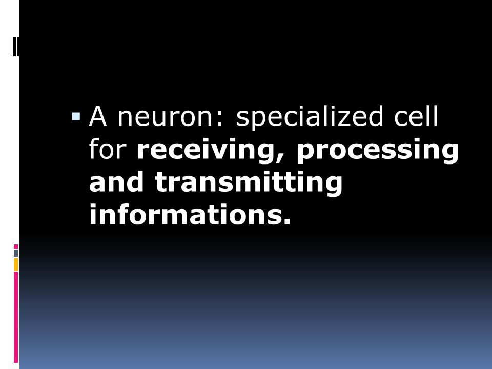  A neuron: specialized cell for receiving, processing and transmitting informations.