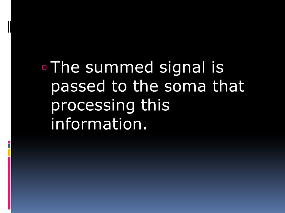 The summed signal is passed to the soma that processing this information.
