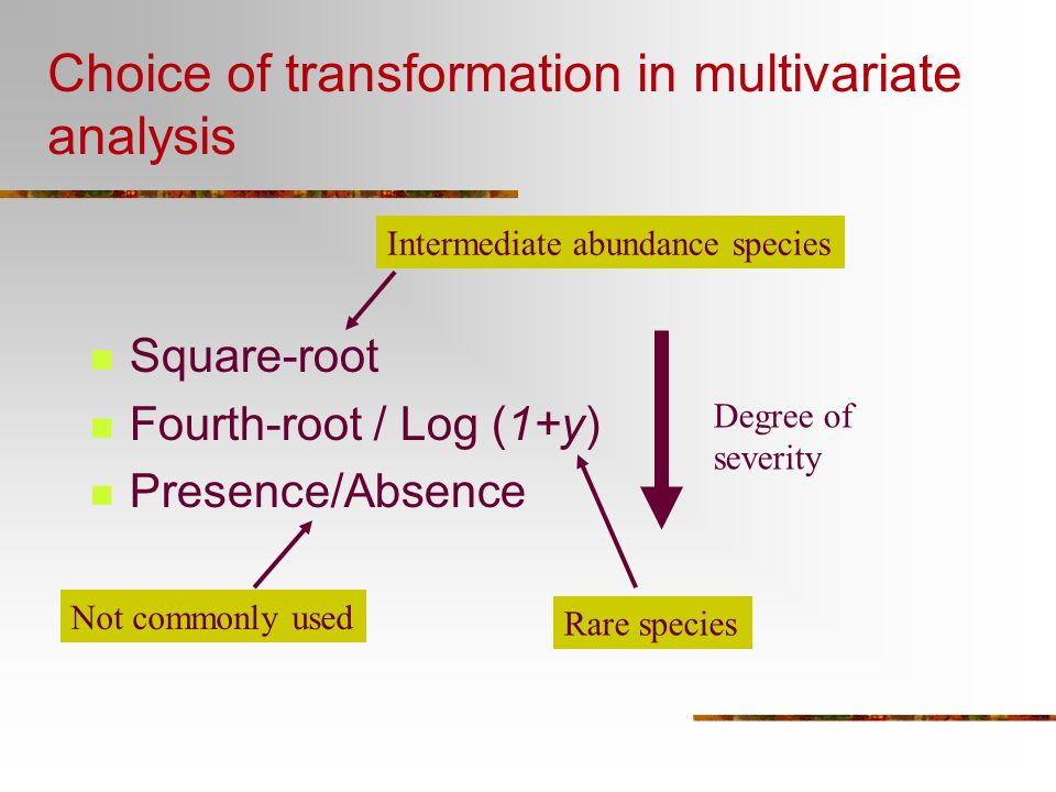 Choice of transformation in multivariate analysis Square-root Fourth-root / Log (1+y) Presence/Absence Degree of severity Intermediate abundance speci