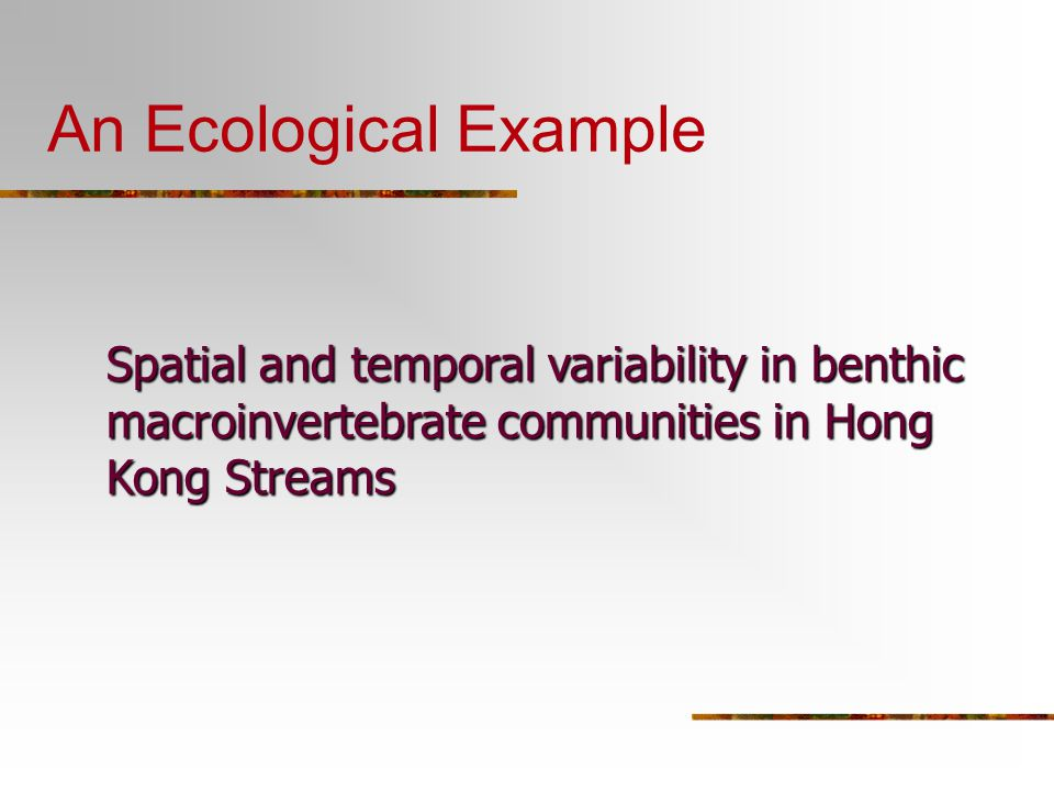An Ecological Example Spatial and temporal variability in benthic macroinvertebrate communities in Hong Kong Streams
