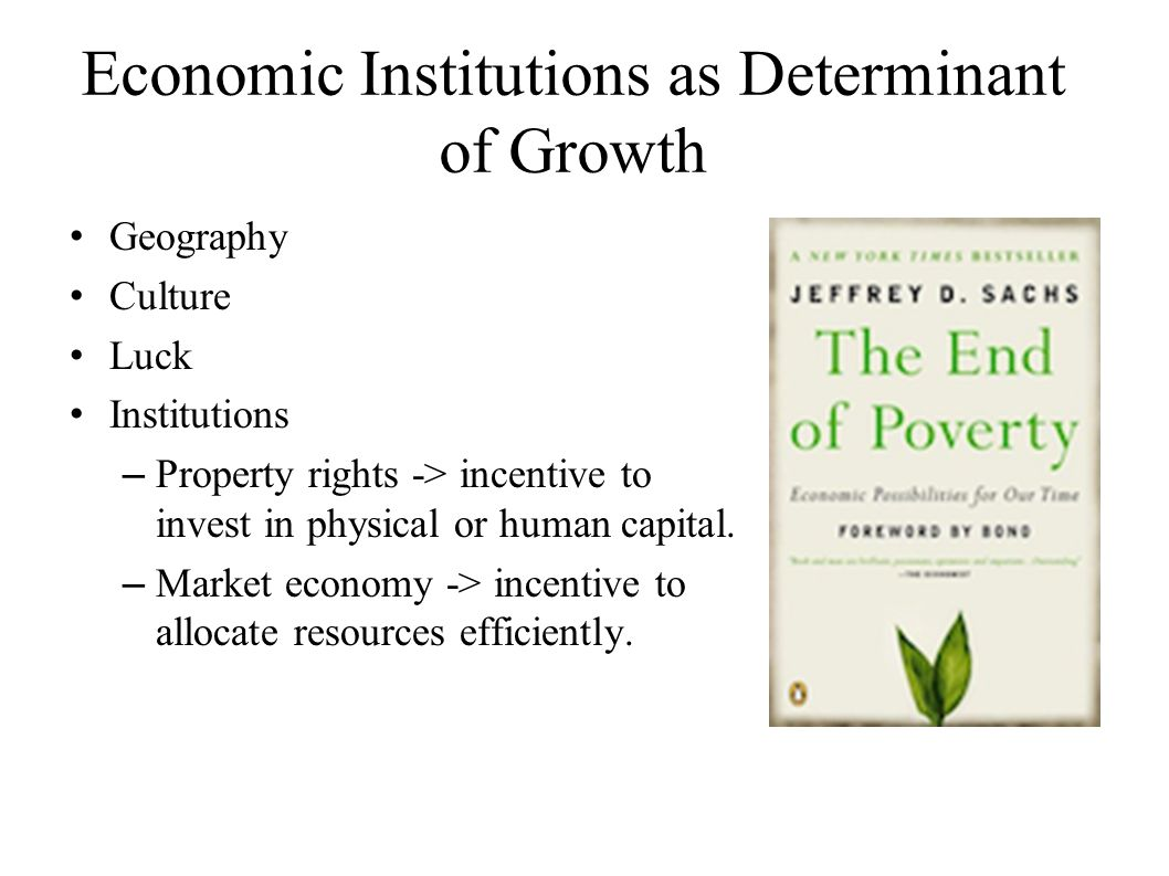 Economic Institutions as Determinant of Growth Geography Culture Luck Institutions –Property rights -> incentive to invest in physical or human capital.