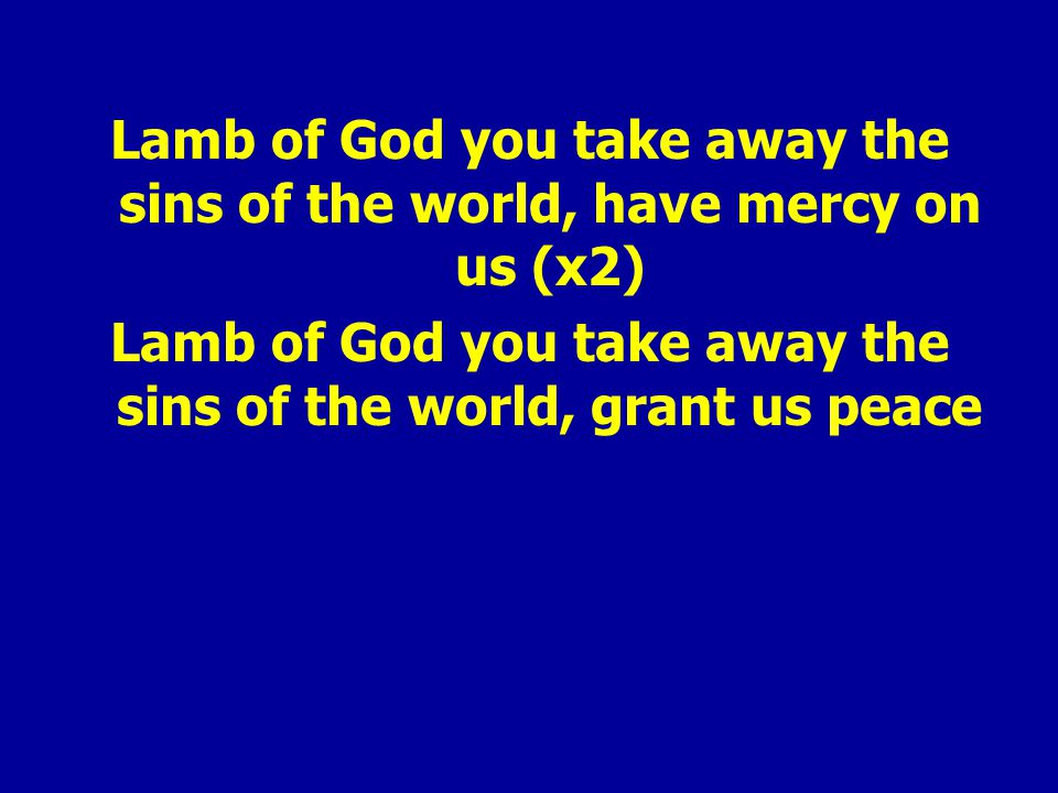 Lamb of God you take away the sins of the world, have mercy on us (x2) Lamb of God you take away the sins of the world, grant us peace