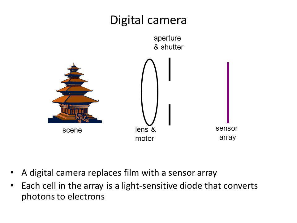 Digital camera scene sensor array lens & motor aperture & shutter A digital camera replaces film with a sensor array Each cell in the array is a light-sensitive diode that converts photons to electrons