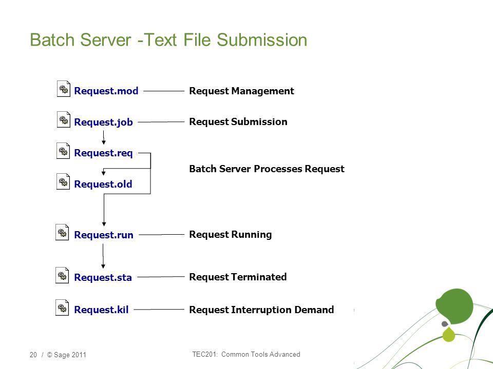 / © Sage 2011 Batch Server -Text File Submission TEC201: Common Tools Advanced 20 Request.mod Request.job Request.req Request.old Request.run Request.sta Request.kil Request Management Request Submission Batch Server Processes Request Request Terminated Request Interruption Demand Request Running