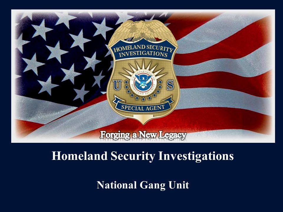 Homeland Security Investigations National Gang Unit