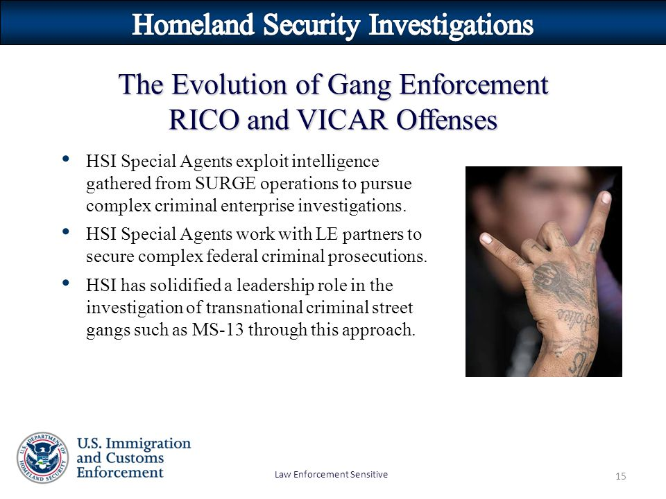 Law Enforcement Sensitive 15 HSI Special Agents exploit intelligence gathered from SURGE operations to pursue complex criminal enterprise investigations.