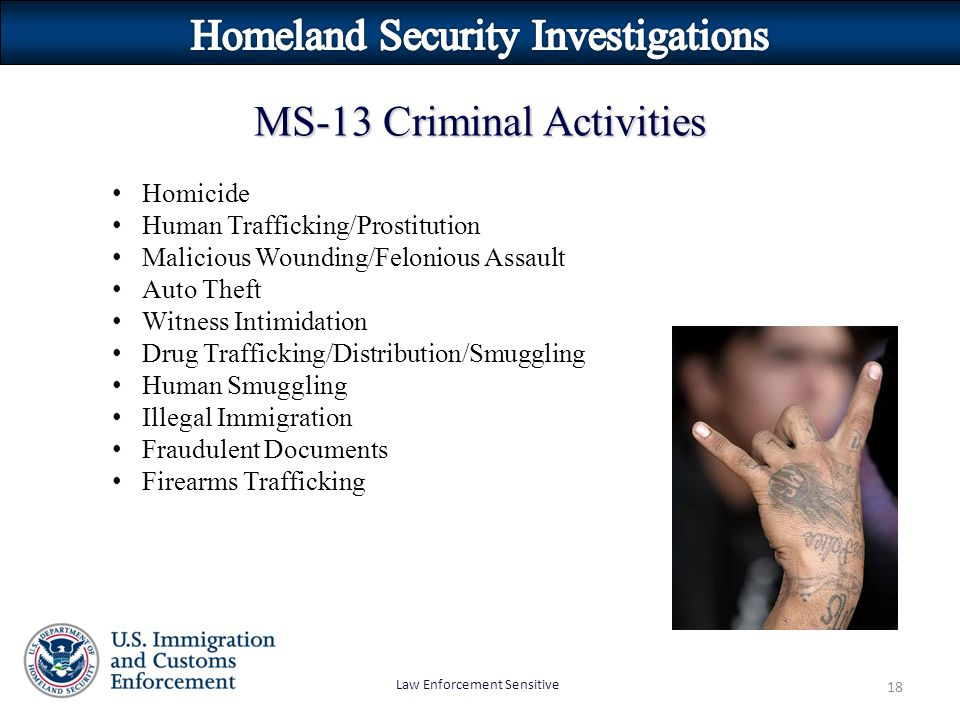 Law Enforcement Sensitive 18 MS-13 Criminal Activities Homicide Human Trafficking/Prostitution Malicious Wounding/Felonious Assault Auto Theft Witness Intimidation Drug Trafficking/Distribution/Smuggling Human Smuggling Illegal Immigration Fraudulent Documents Firearms Trafficking