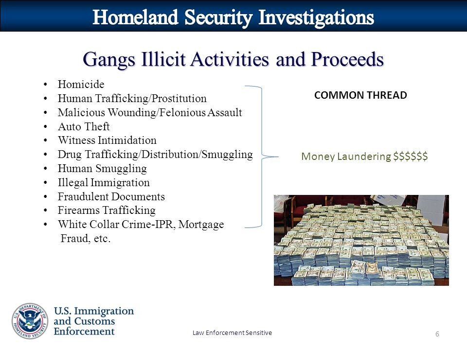 Law Enforcement Sensitive 6 Gangs Illicit Activities and Proceeds Homicide Human Trafficking/Prostitution Malicious Wounding/Felonious Assault Auto Th